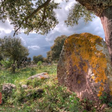 La stele di Nurnet – Sos Settiles, Oniferi