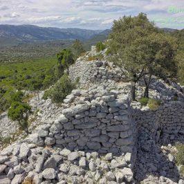 Coa 'e Serra, un nuraghe nel bosco